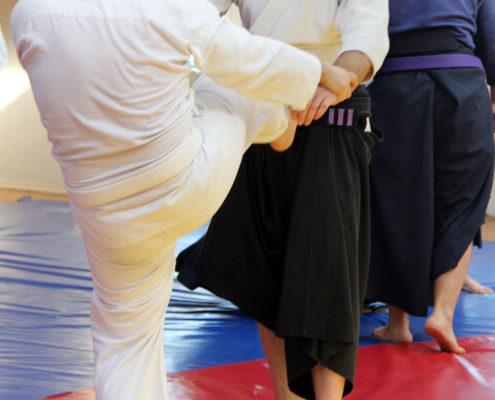 Hakko Denshin Ryu