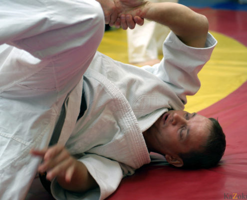 Отработка техники традиционного джиу-джитсу.