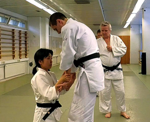 Техника Дайто рю Такумакай