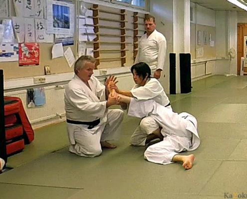 Техника Дайто-рю Такумакай