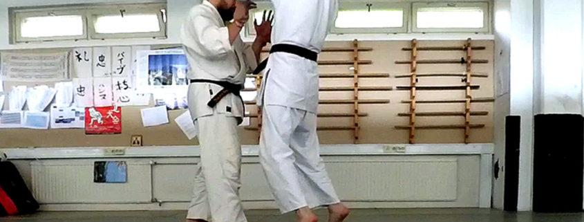 Рюотэ-дори Айки-агэ