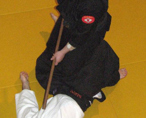 Hakko Denshin Ryu | Хакко Деншин рю