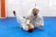 Тренировка в японских традиционных БИ
